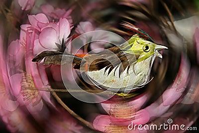 Ptaszyna