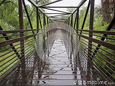 Puente de rastro mojado de la bici
