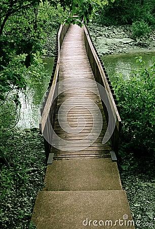 Puente fuera de las maderas