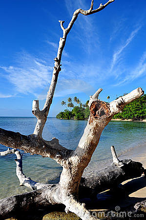 Puerto Rico Beach 1