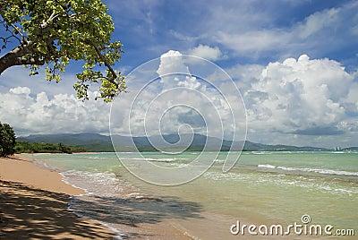 Puerto rico s hidden beach