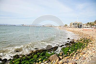 Puerto Vallarta Shore
