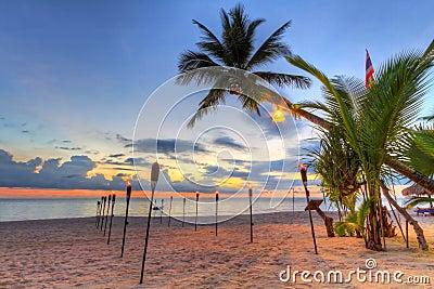 Puesta del sol bajo la palmera tropical en la playa