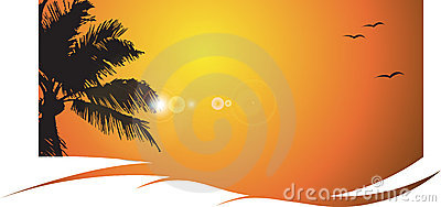 Puesta del sol caliente con la palmera, tropical
