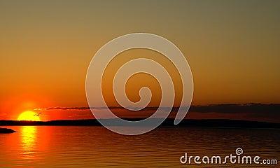 Puesta del sol en un lago y el silouette de la gaviota