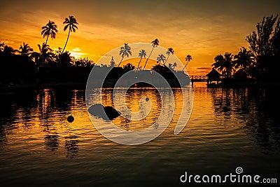 Puesta del sol en un paraíso tropical con las palmeras