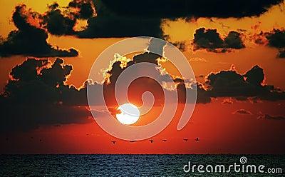 Puesta del sol roja del océano