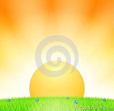 Puesta del sol sobre prado
