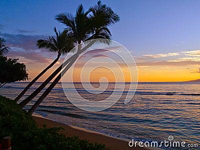 Puesta del sol tropical