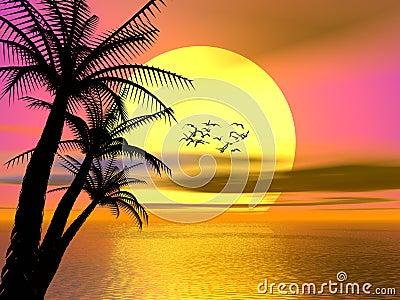 Puesta del sol tropical colorida, salida del sol
