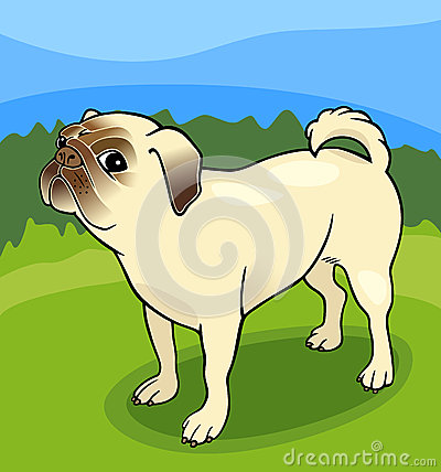 Pug dog cartoon illustration