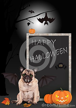 Free Pug Dog Dressed Up As Bat, With Pumpkins And Blackboard Sign With Text Happy Halloween, Stock Image - 101122671