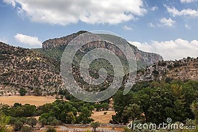 Puig De sâAlcadena
