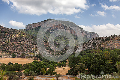 Puig de s'Alcadena