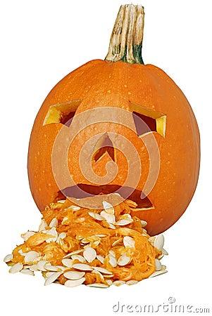 Puking Pumpkin Stock Photography - Image: 6523282