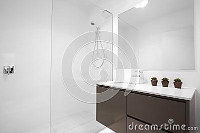 Pulisca la stanza da bagno moderna
