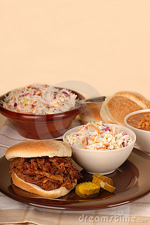 Pulled pork sandwich with slaw
