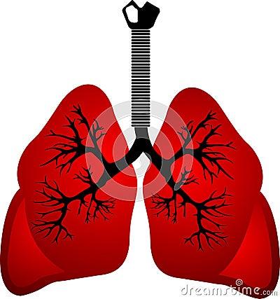 Pulmones rojos