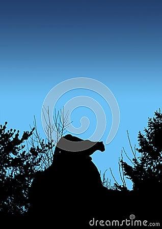 Puma que acecha en azul
