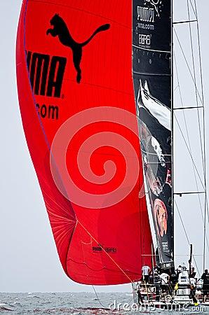 Puma under spinnaker Editorial Stock Image