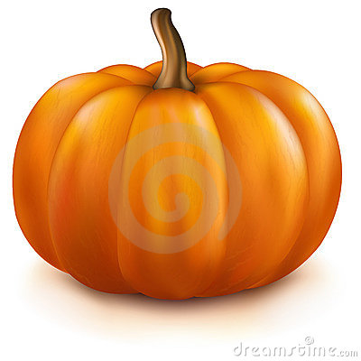Free Pumpkin Royalty Free Stock Photography - 21559087