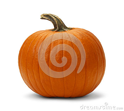 Free Pumpkin Stock Photography - 35211162