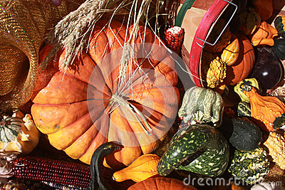 Pumpkin with Assorted Gourds