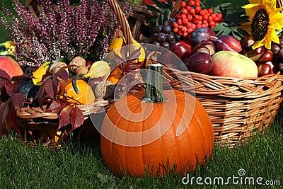 Pumpkin with autumn goodies