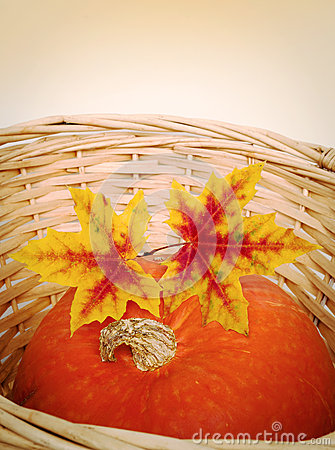 Pumpkin with autumn leaves in basket