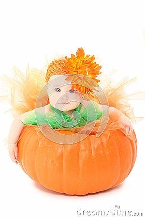 Free Pumpkin Baby Stock Photo - 16287460