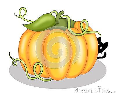 Pumpkin with black cat