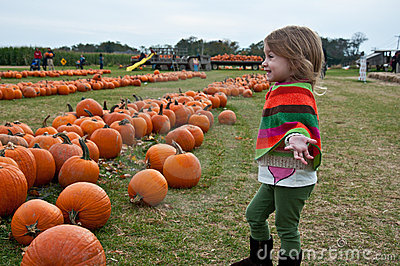 Pumpkin Bliss