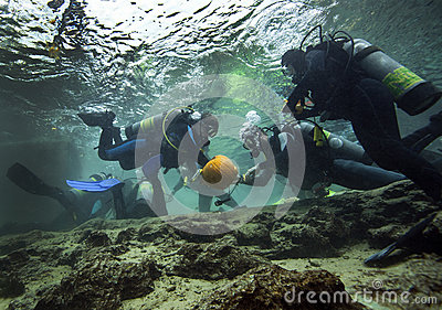 Pumpkin Carving Underwater - Blue Springs Editorial Stock Image