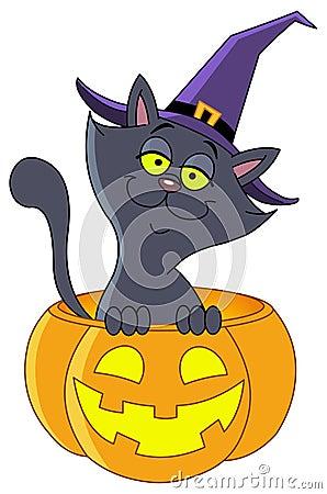 Free Pumpkin Cat Royalty Free Stock Photography - 15975117