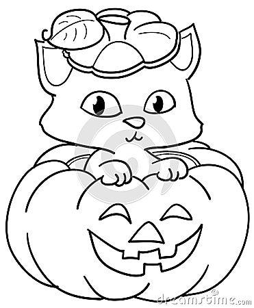 Pumpkin and cute cat bw