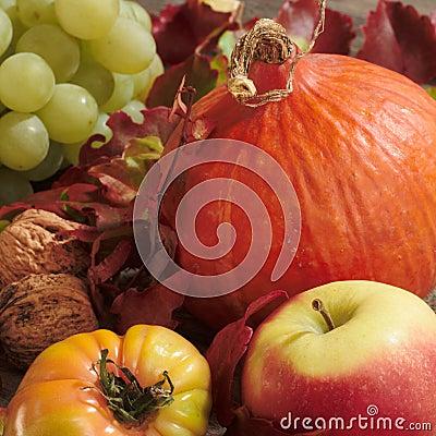 Pumpkin and fruits