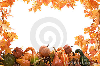 Pumpkin and gourds with leaves
