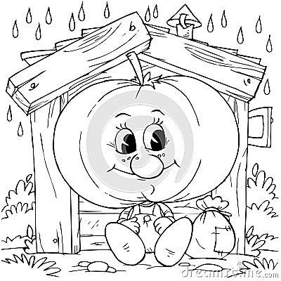Pumpkin in a hut