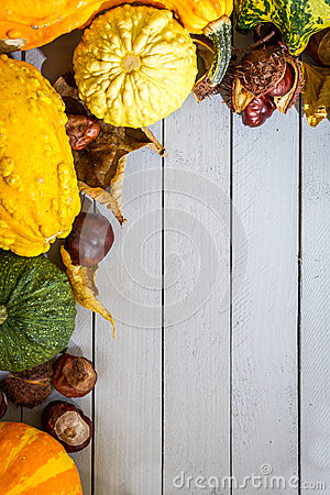 Free Pumpkin, Leaves And Chestnut Stock Photography - 27327592