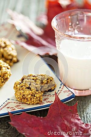 Pumpkin oat cookies