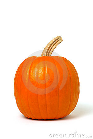 Free Pumpkin On White Stock Photos - 1624673