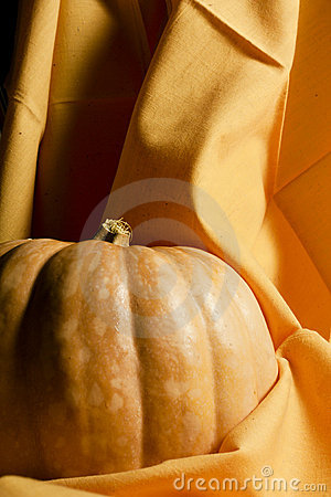 Pumpkin on Orange Cloth