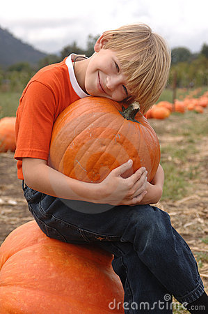 Pumpkin Patch Boy