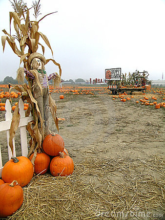 Pumpkin Patch Scarecrows with Wheelbarrow