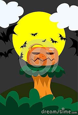Pumpkin on Podium