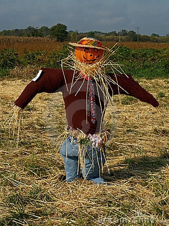 Free Pumpkin Scarecrow Royalty Free Stock Photography - 4423537