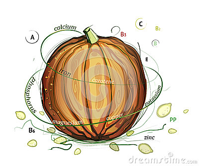 Pumpkin and Seeds Vitamins Illustration