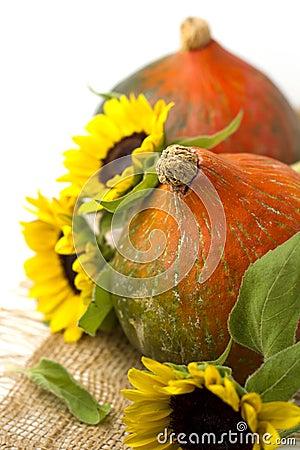 Pumpkin and sunflowers