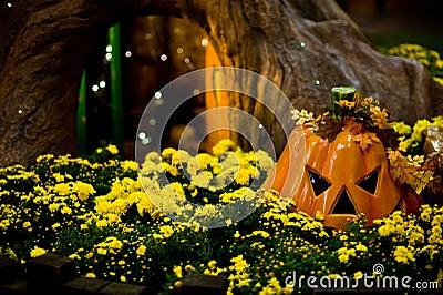 Pumpkin & Tree