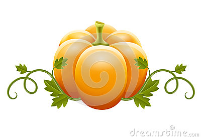 Pumpkin vegetable with green leaves